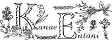Kanae Entani - Embroidery Artist